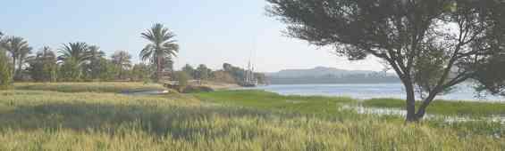 Египет. Река Нил