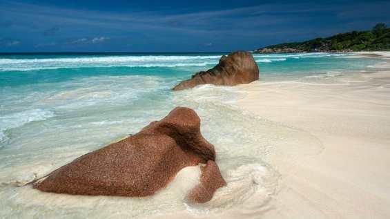 Сейшелы. Белоснежно-розовый пляж на острове Ла-Диг