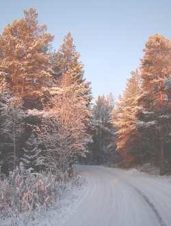 Зима в окрестностях города Кандалакша