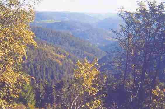 Шварцвальд осенью. Германия