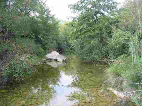 Река в Каталонии