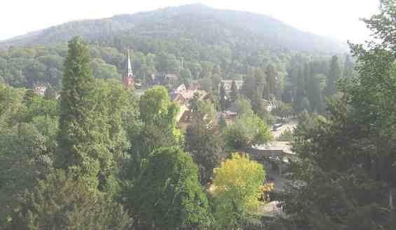 Живописный вид курортного парка Баденвайлер