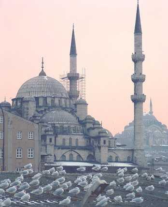 Мечеть в городе Стамбул