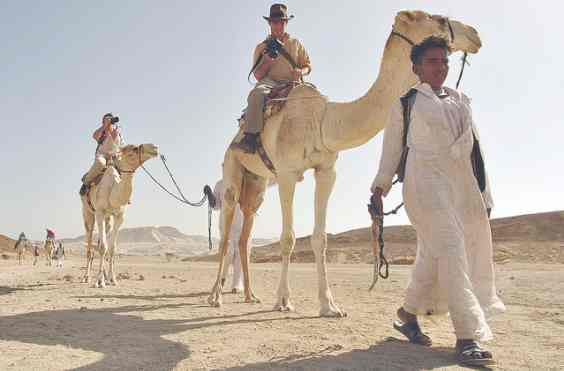 Прогулка на верблюдах по Синайской пустыне