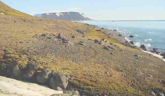Пустынное побережье острова Нортбрук.