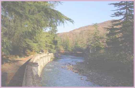 Набережная реки Мацеста