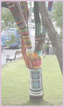 Дерево в столице Рейкьявик