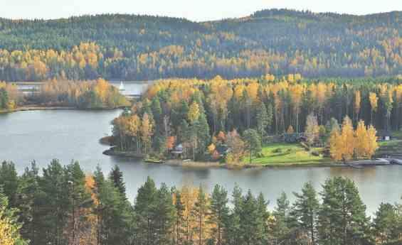 Озеро Пяйянне Золотая осень